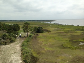 View from the Sapelo Island Lighthouse, GA
