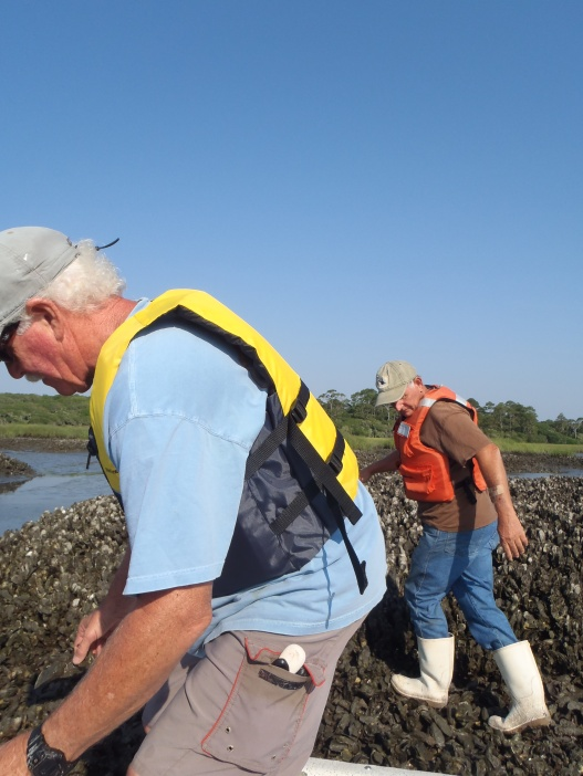 Mike Sullivan (left) and Phil Cubbedge (right) assisting with oyster monitoring in the GTM NERR