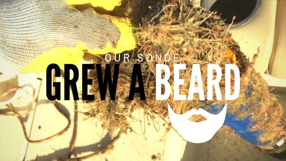 Our Sonde