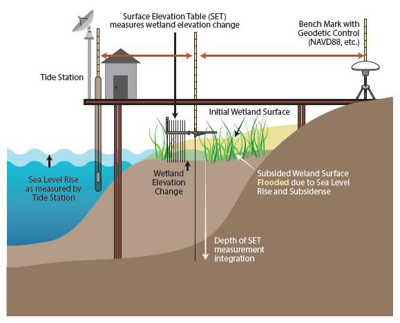 Sentinel Site Infrastructure diagram