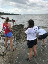 Group of students collecting measurements on reef dimension.