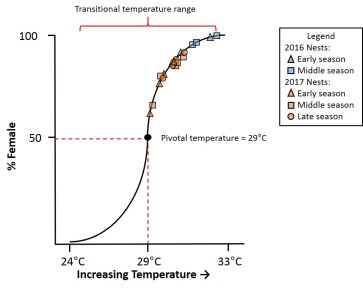 Middle third of incubations temperatures recorded in nests on Little St. George Island superimposed on theoretical temperature sex determination curve (after Ackerman 1997 and Wibbels 2003). 2016 nest temperatures group together on the higher end of the graph at over 80% female, while 2016 nest temperatures are more moderate around 60-80% female.