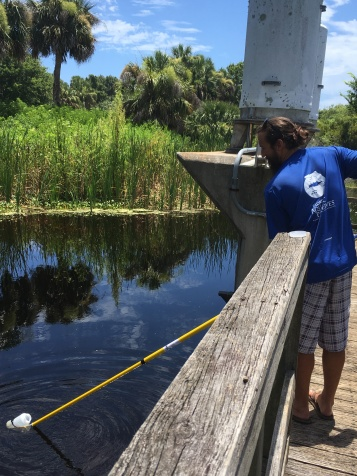 Northeast Florida Aquatic Preserves Biologist, Jimmy Tomazinis, collecting water at the Mickler's Landing site using the sampling pole technique.